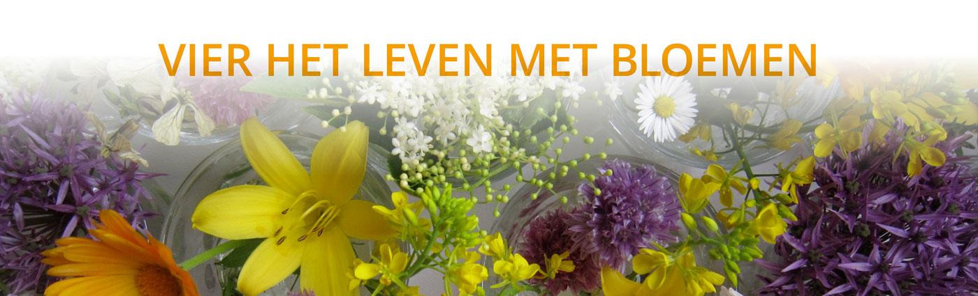 Floral-Touch-slider-Vierhetleven-1