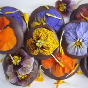 viooltjes bonbons